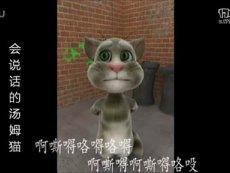 会说话的汤姆猫——演唱神曲忐忑