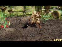 《怪物猎人OL》1080P基准测试画面