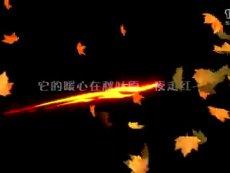 一起冒险吧!《迷城物语》824全平台萌幻公测