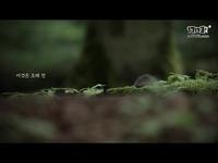 《黑色沙漠手游》驯兽师预告视频