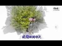 依然想着你 - 任妙音(浙江省丽水风景)