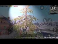 刺激战场揭秘:雪地图偷偷增加了爬树功能?